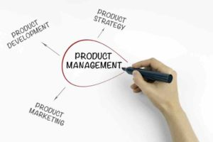 Need Product Management?